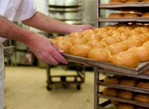 ¡Mentiras y verdades acerca del control de plagas en la industria panadera!